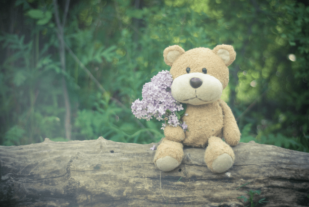 Photo of a teddy and flowers