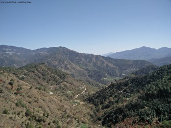 All About my Kasauli & Mashobra Trip/How to Plan, What to Cover, etc.