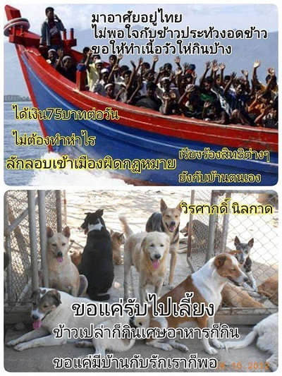 """The text on the top picture says """"they come to Thailand and they're not satisfied with the food they get. They demand to be given beef. They receive 75 baht per day for doing nothing. They entered our country illegally. Now they are demanding rights!"""" The picture below states """"the dogs are happy with whatever they are given"""". The image seems to follow the argument that it's better to use money and resources to help Thai street dogs then to help the Rohingya."""