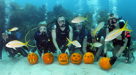 Underwater pumpkin contest carvers display their creations amid yellowtail snappers  in the Florida Keys National Marine Sanctuary. The contest, staged by the Amoray Dive Resort, judges divers on their artistic originality, as well as the degree of difficulty to carve the entry in the subsea environment.