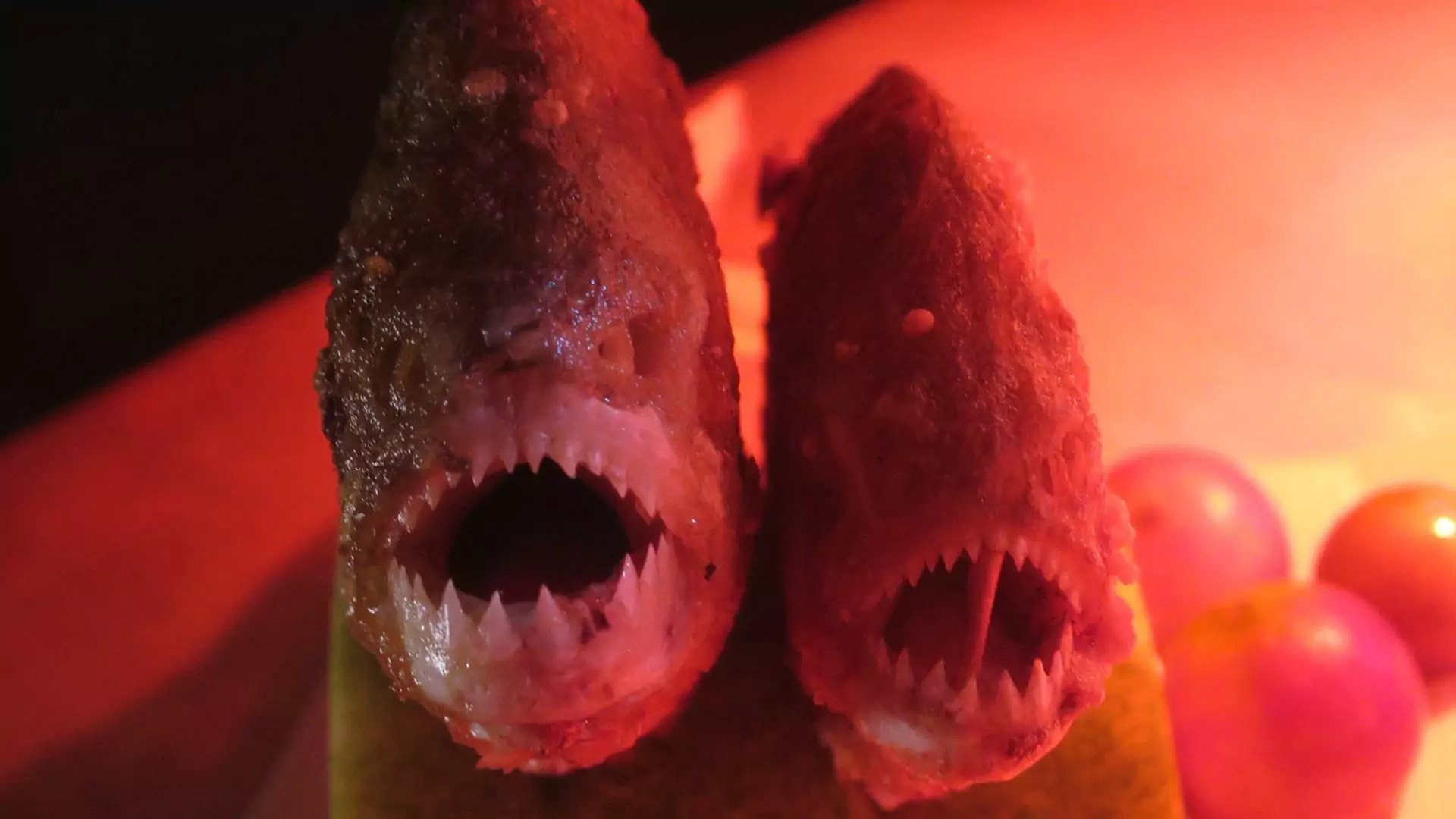Close-up of two piranhas in red lighting.