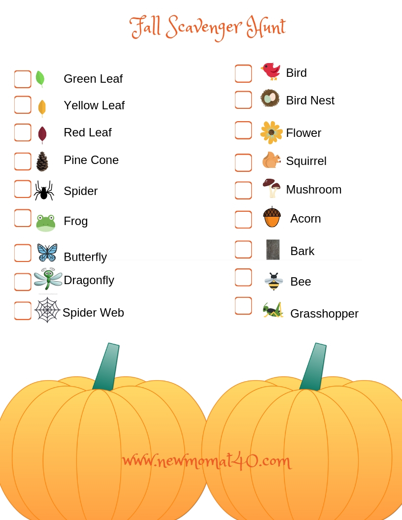graphic relating to Fall Scavenger Hunt Printable named The Perfect Absolutely free Printable Slide Scavenger Hunt