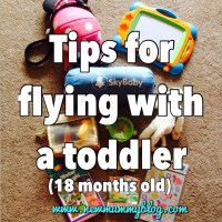 Flying with a toddler (18 months)