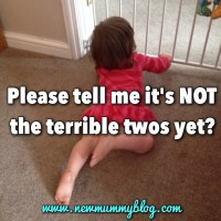 Flat out tantrums & 'that's mine' snatches... Have the terrible twos come early?