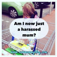 Am I now just a harassed mum?