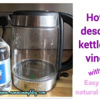 How to descale the kettle with vinegar | Easy natural cleaning with NO EFFORT!
