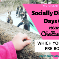 Socially Distanced days out near Cheltenham - which you must PRE-BOOK