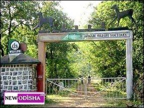 Debrigarh wildlife sanchuary Bargarh