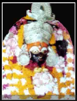 Maa Bhadrakali Temple of Bhadrak