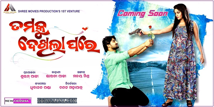 tumaku dekhila pare odia movie poster