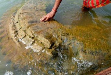 Submerged 500 Year Old Temple Resurfaces in Odisha