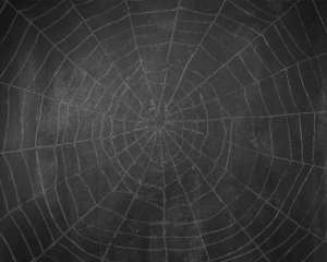 nomb_chalkboard_spiderweb_background copy