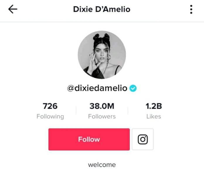 Dixie Damelio TikTok profile