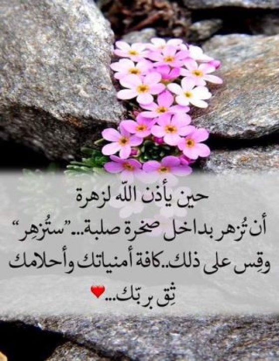 الصور الاسلامية .. اجمل-بوستات-دينية-8