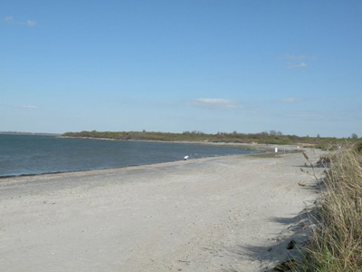 Newport RI Beaches - Sun, sand, live music and lobster rolls!