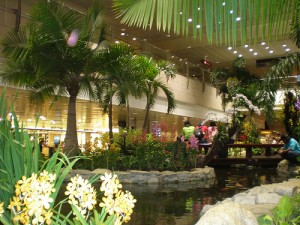 Airport Garden 300x225 25 Beautiful Indoor Plant Design Images