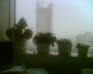 Foggy Window 300x240 25 Beautiful Indoor Plant Design Images