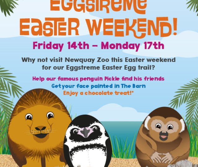 Easter Fun At Newquay Zoo 14th 17th April 2017