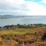 Carlingford of Old 2