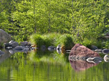 greenwatersmall.jpg