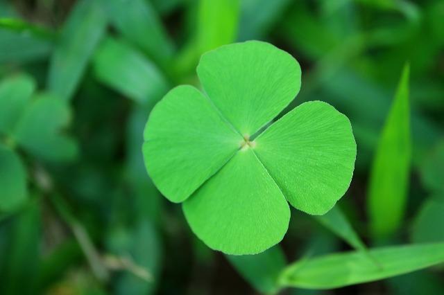 Irish Lucky Charms