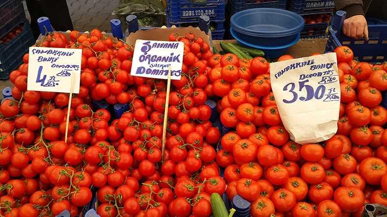 Россия закупит ограниченную партию турецких томатов