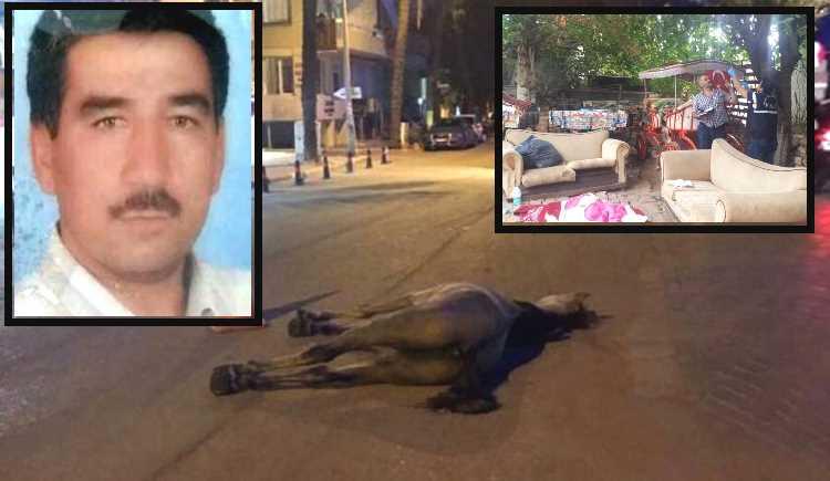 Виновник гибели лошади в Анталье покончил с жизнью