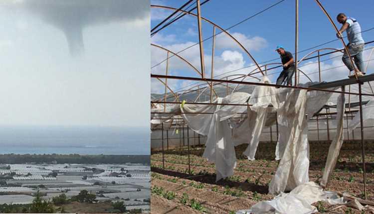 Смерч в Анталии нанес огромный ущерб фермерам