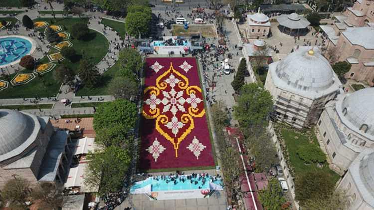 Самый большой ковер из тюльпанов украсил Стамбул