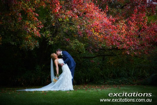 Full length scenic image of bride and groom kissing in amazing Ampelon Gardens, Gol Gol near Mildura. Wedding photography by excitations.