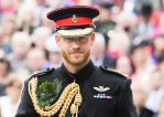Prince Harry won't wear military uniform at Prince Philip's funeral after being stripped of his honorary positions for quitting his royal duties
