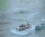 Video shows the moment coast guard members intercepted a boat carrying 5,500 pounds of cocaine worth $94.6MILLION