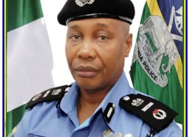Acting IGP Orders Withdrawal of Senior cops connected to EFCC