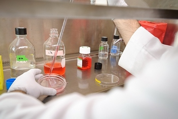 Photo: a researcher splits and redistributes cells at the Influenza Research Institute