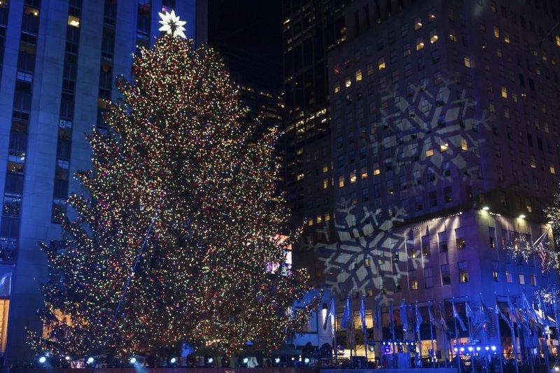 Nyc Christmas Tree Lighting 2019.Rockin Around The Rockefeller Christmas Tree Norway Spruce