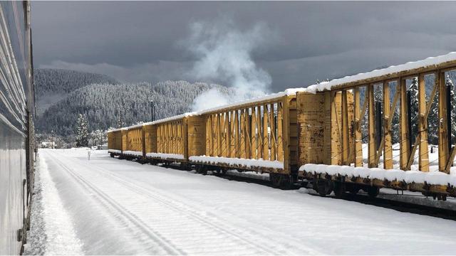 Amtrak Stuck_1551187371839.jpg.jpg