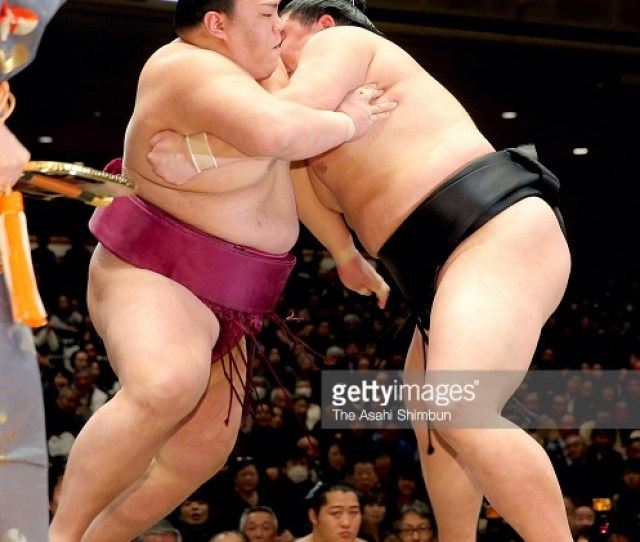Ciao Willy Pic Of The Day Sumo Wrestlers