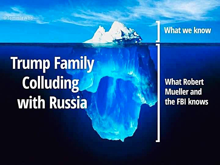Image Result For Trump Has
