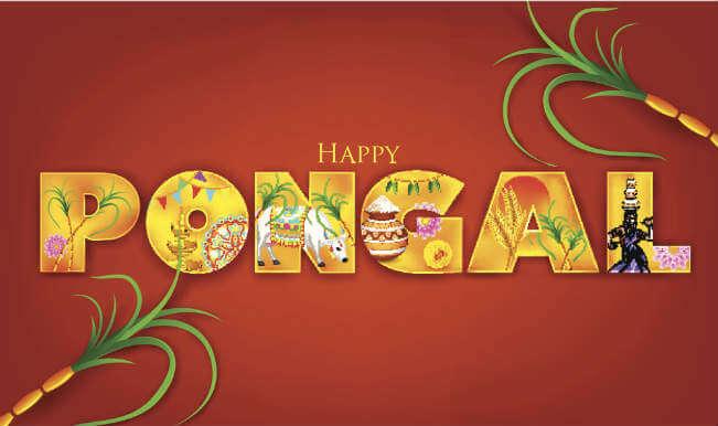 Happy Pongal Festival 2019