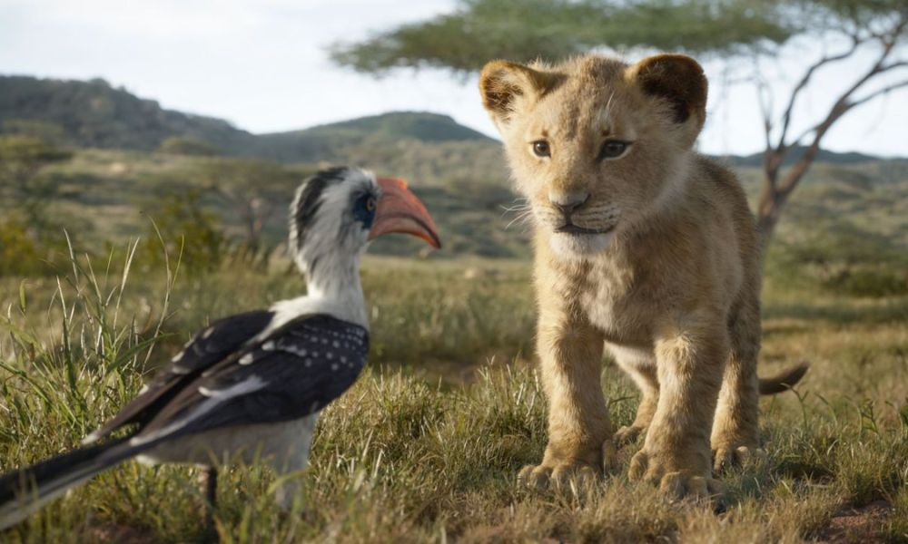 the lion king full movie 720p hd leaked online to download on torrent