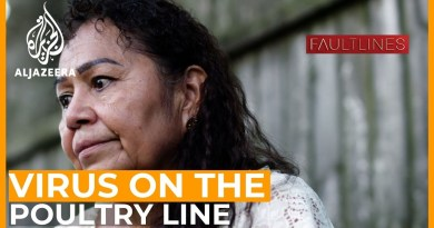 Virus on the Poultry Line | Fault Lines