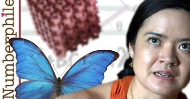 Butterflies and Gyroids – Numberphile