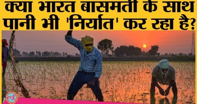 India में Basmati Rice का production Water-crisis को ऐसे दे रहा है न्योता | Crop-diversification