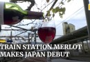 Japanese train station releases Merlot wine from grapes grown on platform vineyard