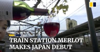 Japanese train station releases Merlot wine from grapes grown on platform vineyard