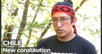 Chile's new constitution: Seats for indigenous groups ahead of vote