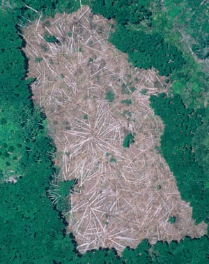 An aerial photograph of an area of the Brazilian Amazon where trees have been felled, then burned