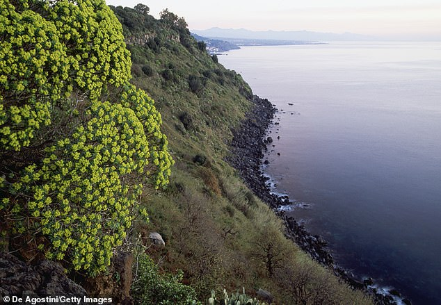 The 'Tarzan' fugitive hid for months in a stone house in the Timpa di Acireale nature reserve in Sicily (pictured)