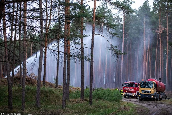 Firefighters splash water on the trees of a forest near the evacuated locality of Alt Jabel in Mecklenburg-Western Pomerania, northern Germany, on Monday
