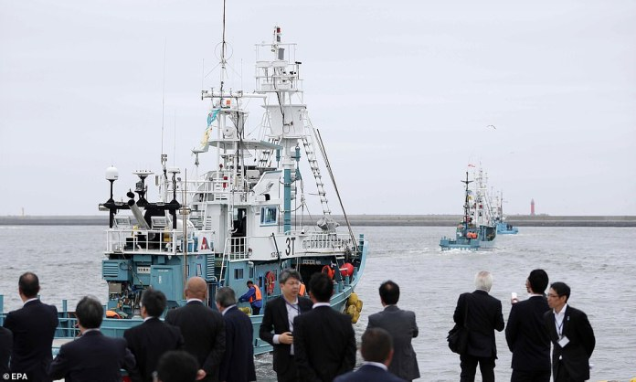 Japanese whaling ships are leaving a Kushiro Port to begin a commercial whale hunt for the first time in 31 years, Japanese northern island of Hokkaido